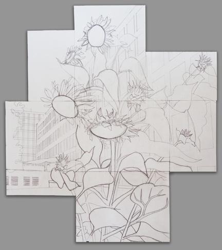 Alex Conrad sunflower drawing