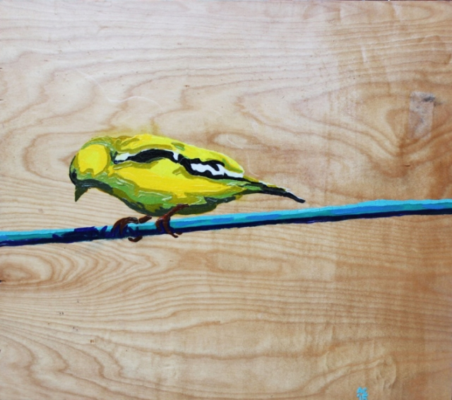 Alex Conrad gold finch painting 1